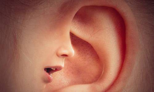 ear-3971050_640%20(1)%20(1)
